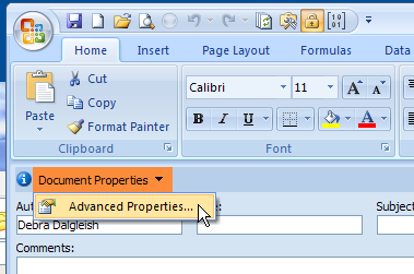 Advanced Properties Excel 2007