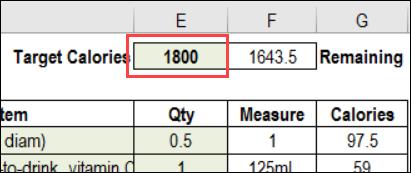 Excel Calorie Counter
