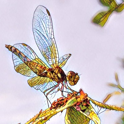 dragonfly photo prisma mosaic