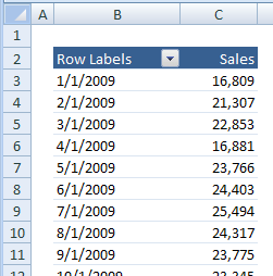Excel Pivot Table Filters - Top 10