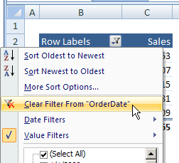 pivot table clear filter