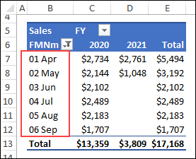 pivot table fiscal year