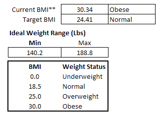 Excel BMI Calculations