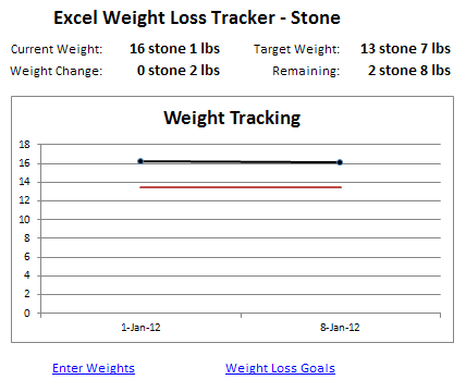 Excel Weight Tracker Stone